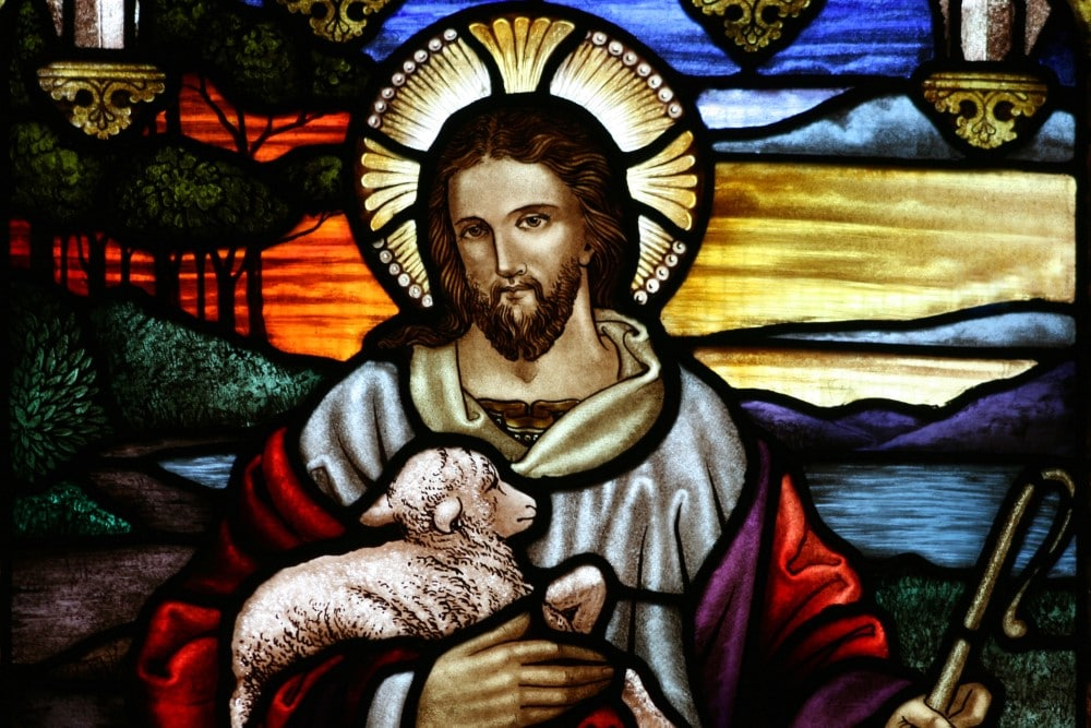 Jó pásztor vasárnapja